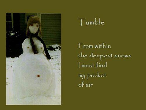Gogyohka-Tumble-500