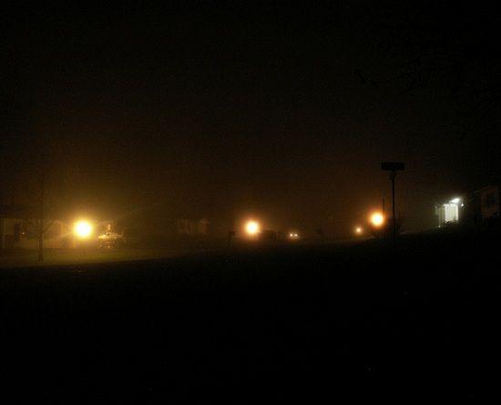 120229-fog1-550