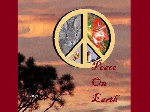 2013-peaceonearth-500