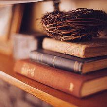 book-shelf-349934_640