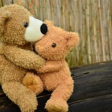 teddy-1113160_640