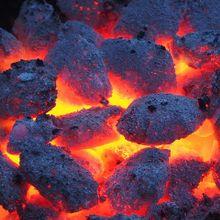 barbecue-386602_640