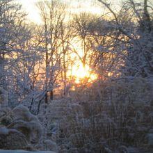 A_Winter_Sunset
