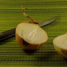 onion-697199_640