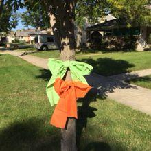 ribbonofcare_green_orange