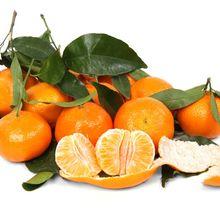 citrus-2395_640