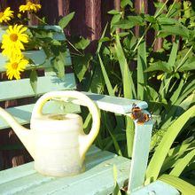 watering-can-63799_640