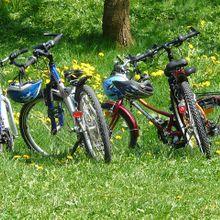 bikes-6895_640