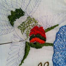 Hummingbirdpic
