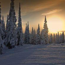 winter-75946_640