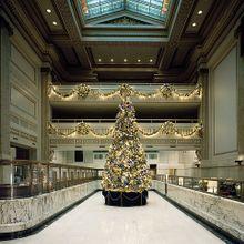 christmas-tree-1091532_640