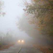 fog-510670_640