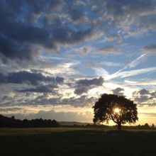 sunrise-430694_640