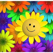 flower-257151_640