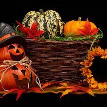 autumn-21495_640