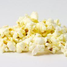 corn-15235_640