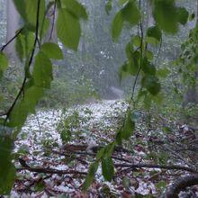 hail-123043_640