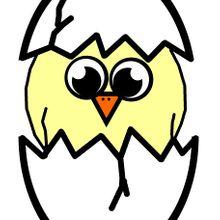 hatching-163569_640