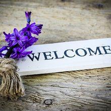 hyacinth-772390_640