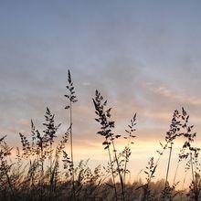 sunrise-344425_640