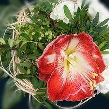 bouquet-1058099_640
