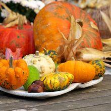 autumn-961742_640