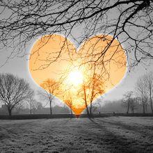 heart-590222_640