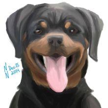 Rottweiler by Nicole Northrop