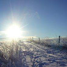 winter-63801_640