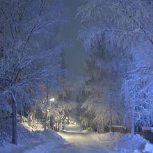 winter-84171_640