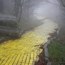 yellow brick road1