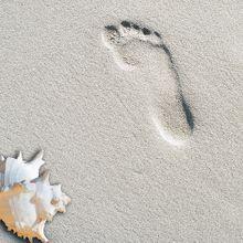 beach-169448_640