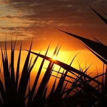 sunset-379651_640