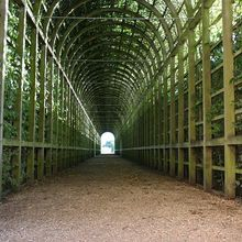 green-tunnel-252853_640