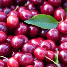 cherry-167361_640