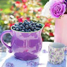 blueberries-864627_640